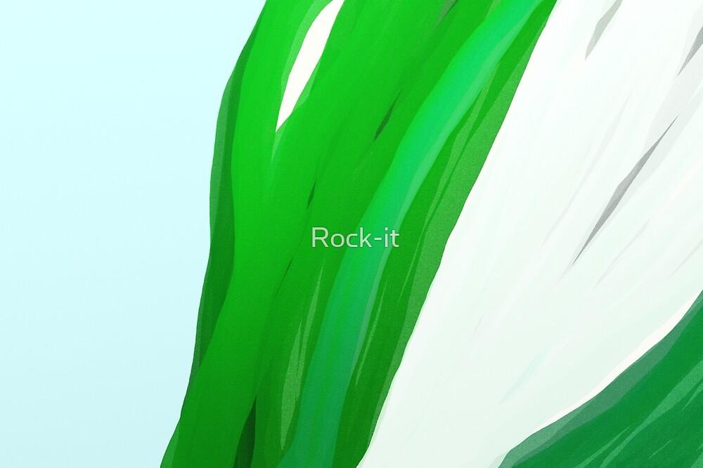 TULIP by Rock-it