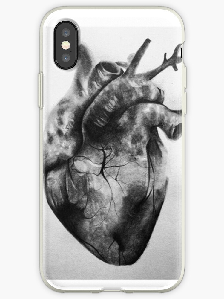 Human Heart Drawing by Curiousminds