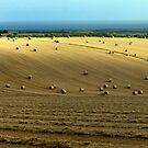 From Hay Bales to the Sea by mikebov