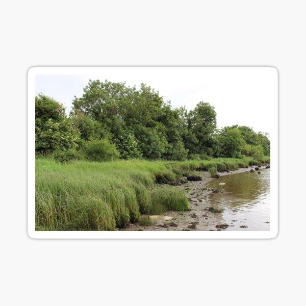 River Foyle 1 Sticker
