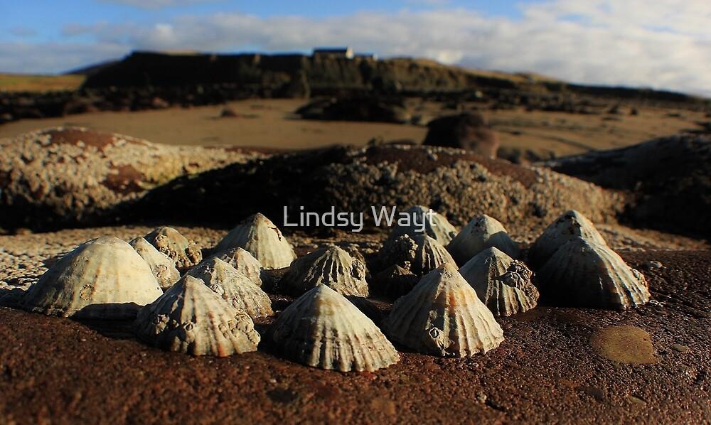 Mini Irish Mountains by Lindsy Wayt