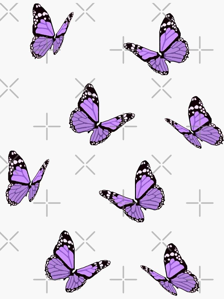 Mariposas lavanda de maiaswamy