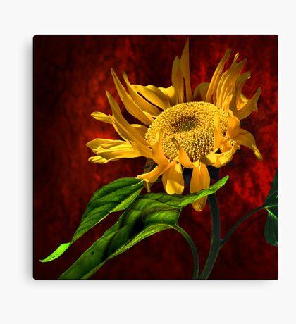 hello sun! Canvas Print