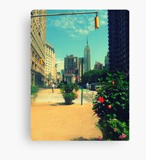picture perfect esb Canvas Print