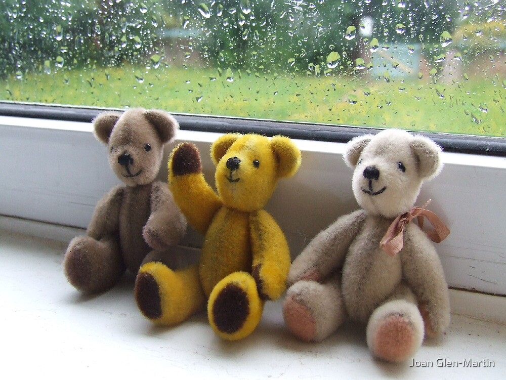 Bears on a Wet Thursday by Joan Glen-Martin