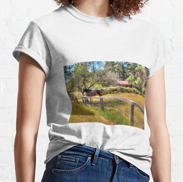 Seeking shelter.  Classic T-Shirt