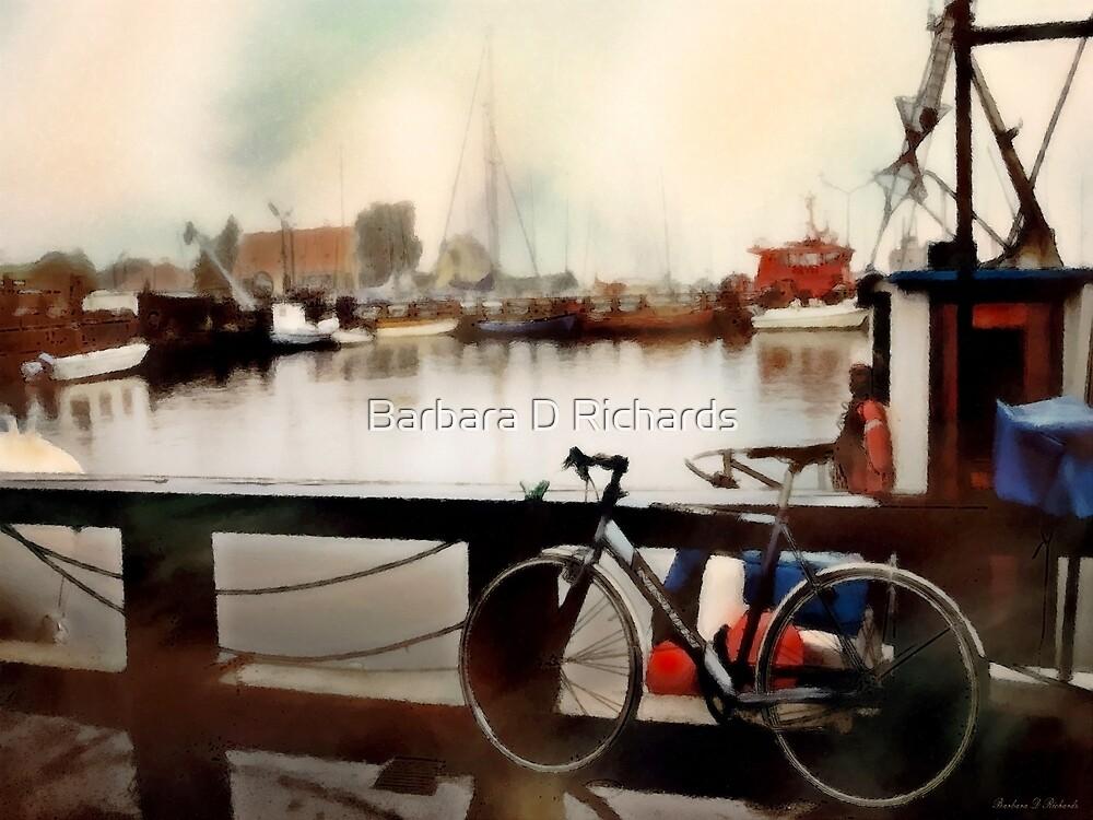 Biking Europe by Barbara D Richards