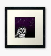 Birds Of Prey Barn Owl  Framed Print