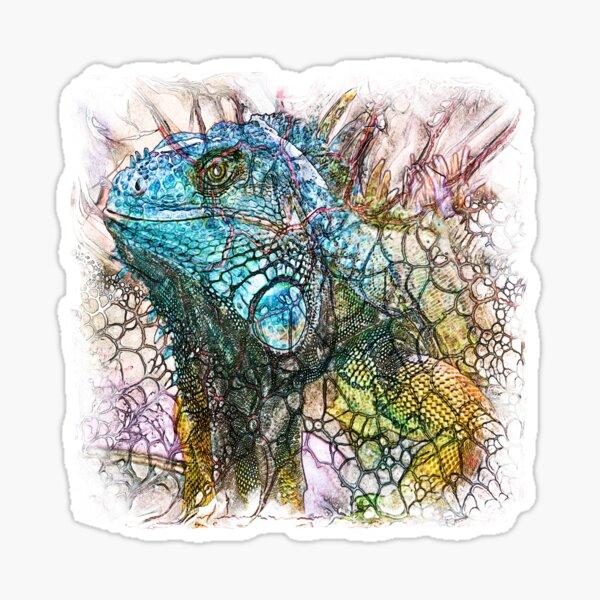 The Atlas of Dreams - Color Plate 203 Sticker