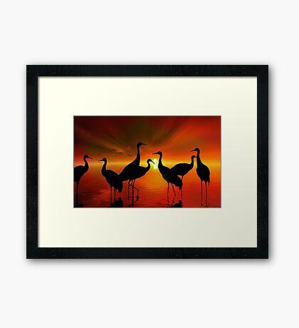Water Sunset Framed Print