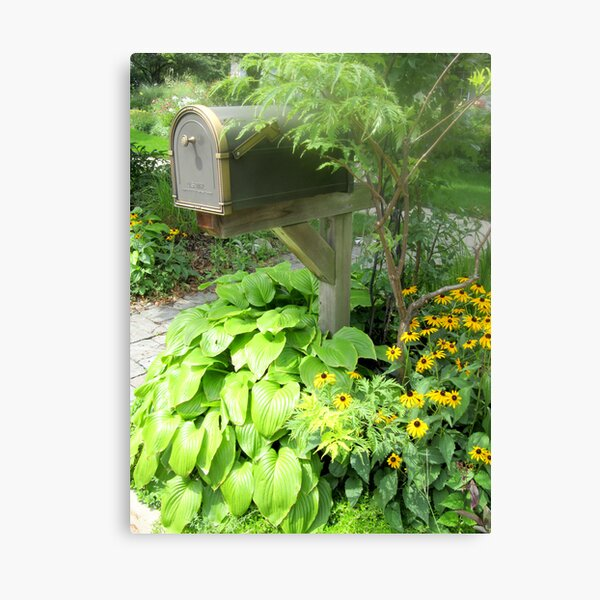 The Blooming Mail Canvas Print