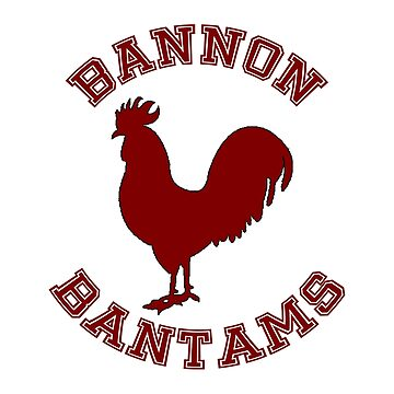Bannon Bantams by TwoPinesFarm