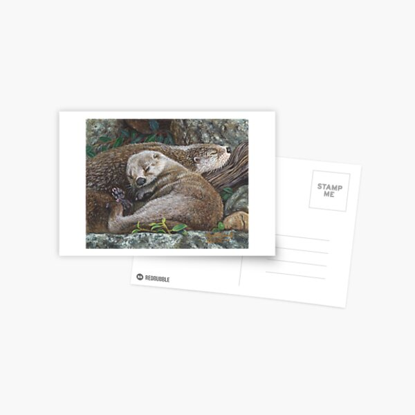 Sleeping Otters Postcard