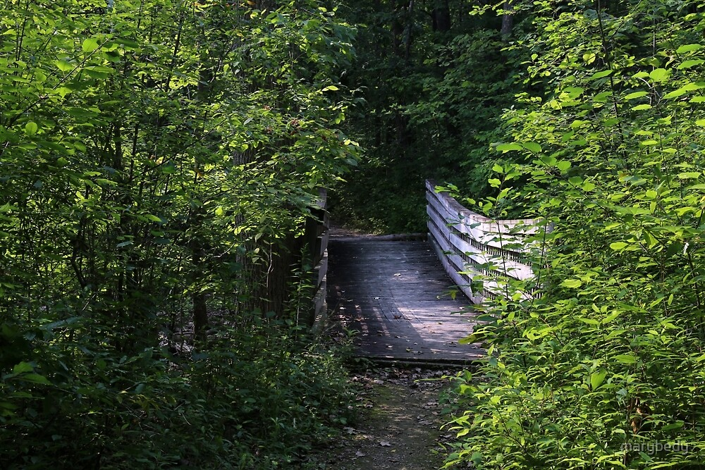 Bridge in Summer by marybedy