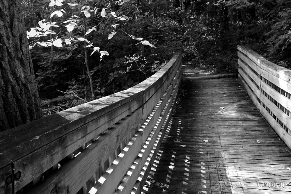 Wetland Bridge in August BW by marybedy