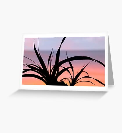 Pandanus Sunset Greeting Card