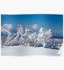 Winter morning, Perisher Poster