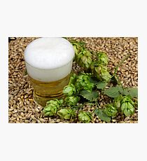 Beer, hops and malt Photographic Print