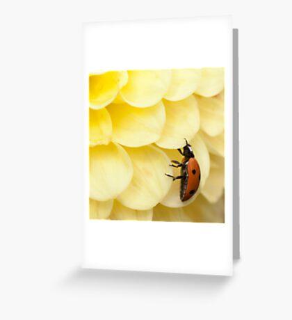 My Underside Greeting Card