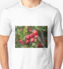 Red Dog Rose Fruits T-Shirt
