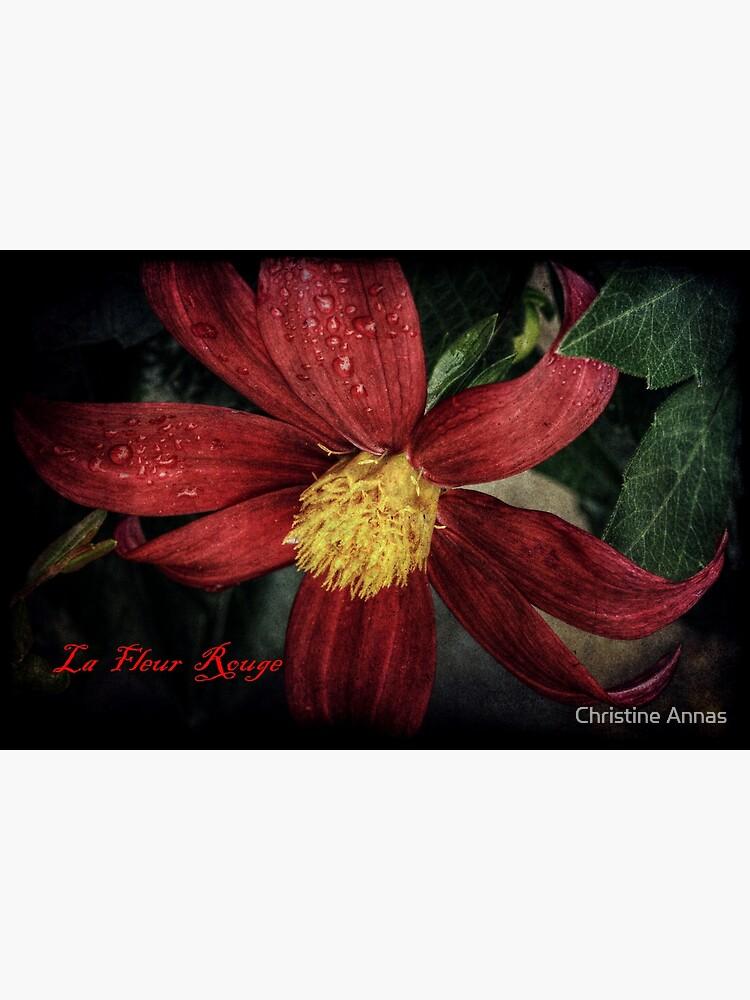 La Fleur Rouge by 2Bricks