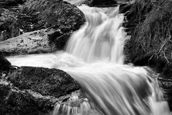 The flow by Agnes McGuinness