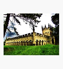 Aukland Castle Deer House. Photographic Print
