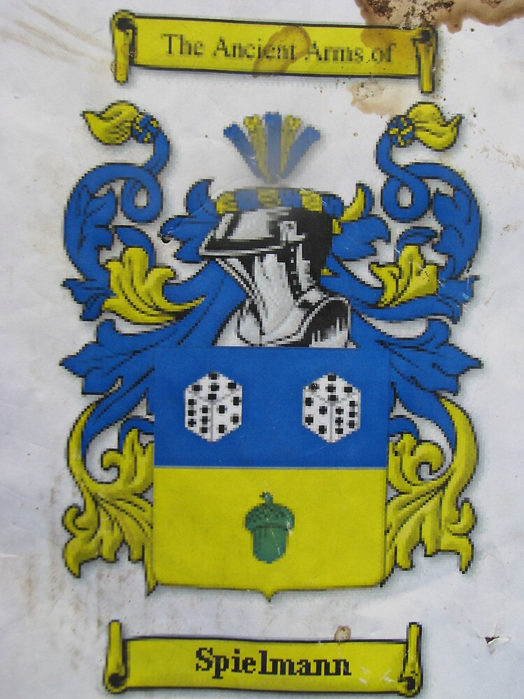 Coat of arms of our family by teaman123