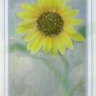 Helianthus Annuus by Diane Johnson-Mosley