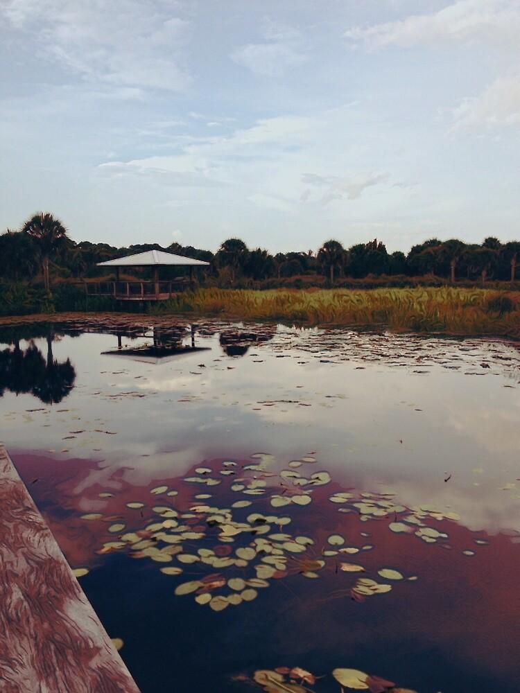 The Pavilion 2 by ksimmonsluna