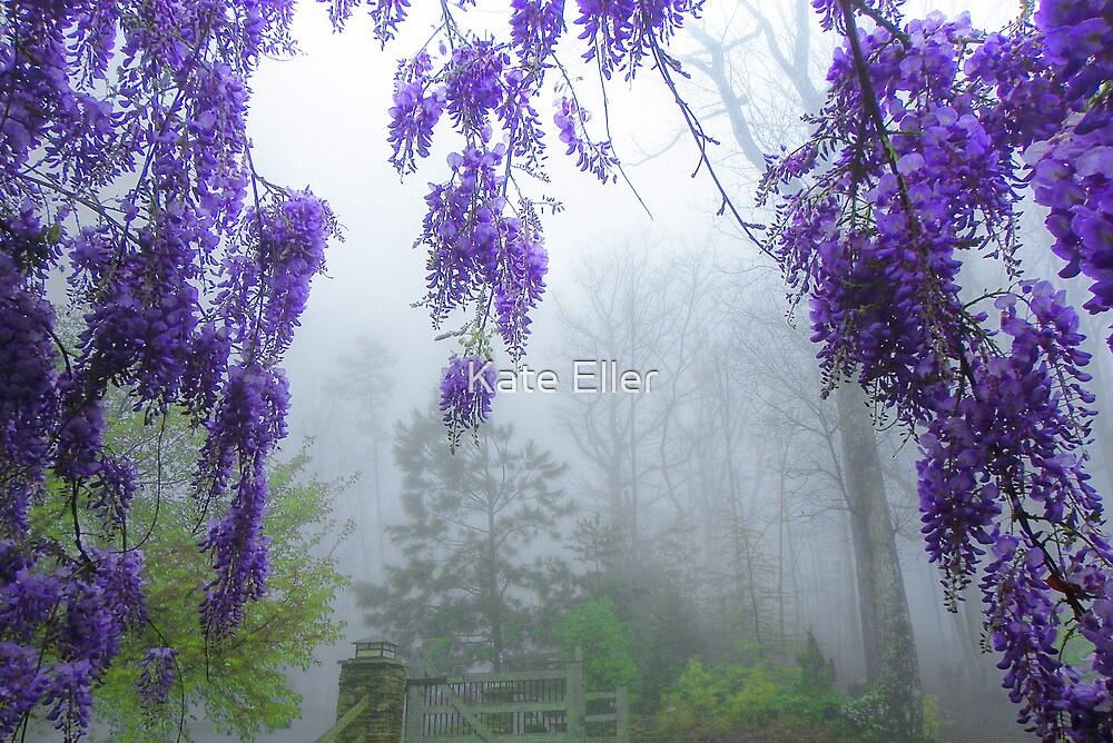 Mystery Mist in the Morning by Kate Eller