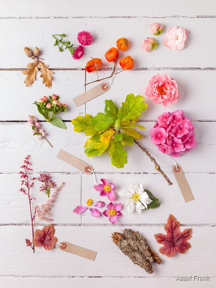 Mixed Flowers With Tags by Assaf Frank