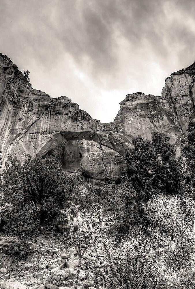 La Ventana Arch by Bill Wetmore