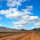 Looking Back on Wilpena Pound by Karina Walther