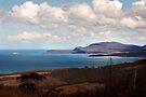 Maria Island across Mercury Passage by Odille Esmonde-Morgan