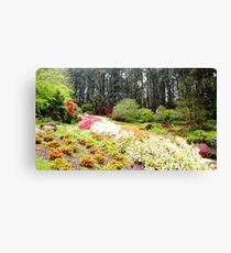 Green Garden-Spring time Canvas Print