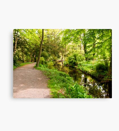 Where Does This Path Go To Canvas Print