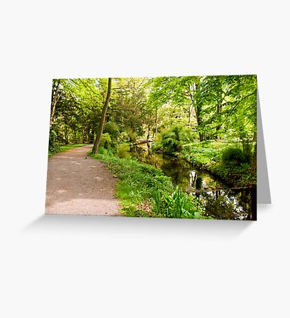 Where Does This Path Go To Greeting Card