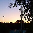 Sunset At The Swimpool by Robert Phillips