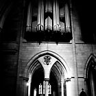 Organ Pipes & Stone by Jordan Miscamble