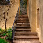 Steps to Everglades Historic House. by Barbara  Glover