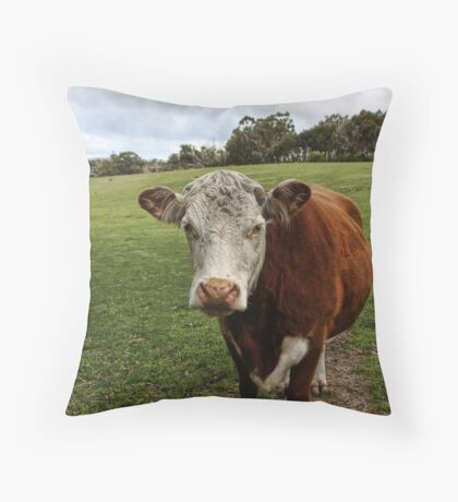 Outstanding In Their Field Throw Pillow