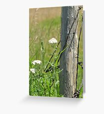 Against the Fence Greeting Card