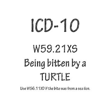 ICD-10: Bitten by a turtle by Shutterbug-csg
