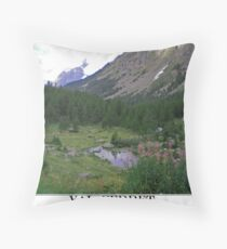 val ferret Throw Pillow