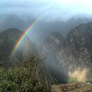 The Promise of Machu Picchu by Edith Reynolds