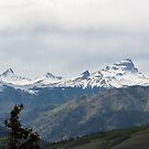 Uncompahgre Peak by Matt Benson