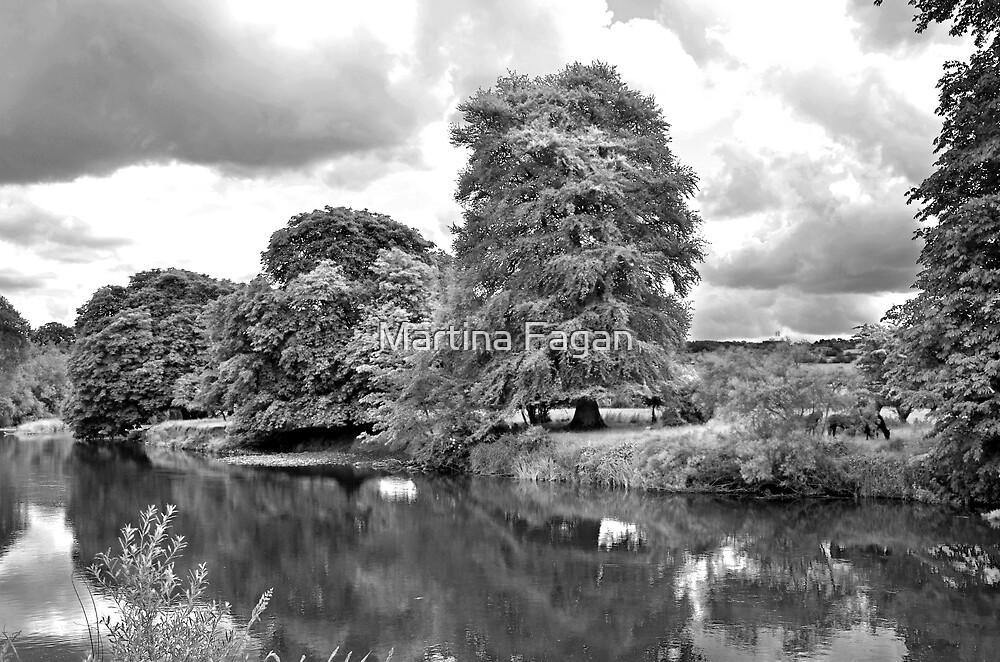 River Nore at Thomastown by Martina Fagan