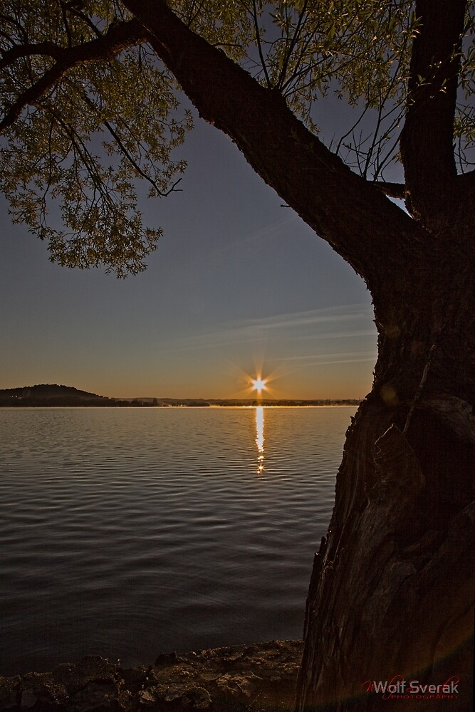 Sunrise at Lake Burley Griffin in Canberra/ACT/Australia (6) by Wolf Sverak