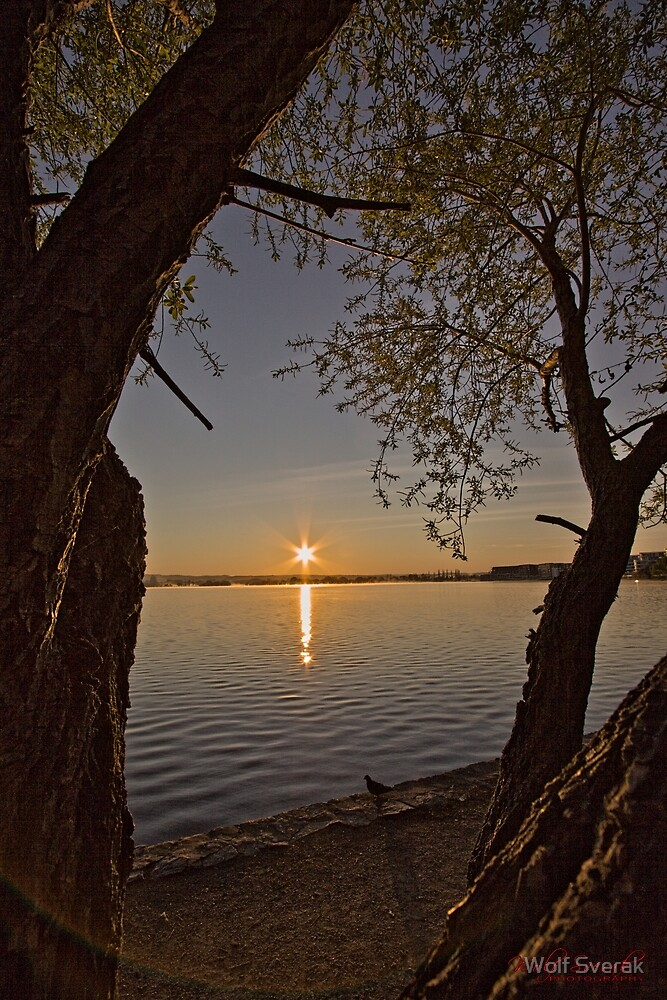 Sunrise at Lake Burley Griffin in Canberra/ACT/Australia (7) by Wolf Sverak